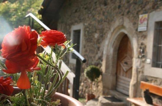Impressionen vom Fronthof in Südtirol